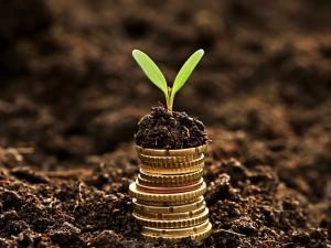 Valuation Parte 2 – Valor intrínseco – quanto eu acho que vale minha empresa