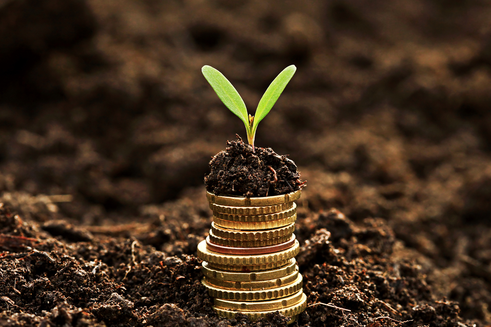 Valor Intrínsico - Valuation - Imagem de uma muda de plantas sobre algumas moedas empilhadas na terra